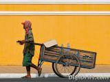 Image of The Week: Cambodia – Royal Palace Cart Man