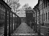 Image of The Week: Poland – A Bone Chilling Silence